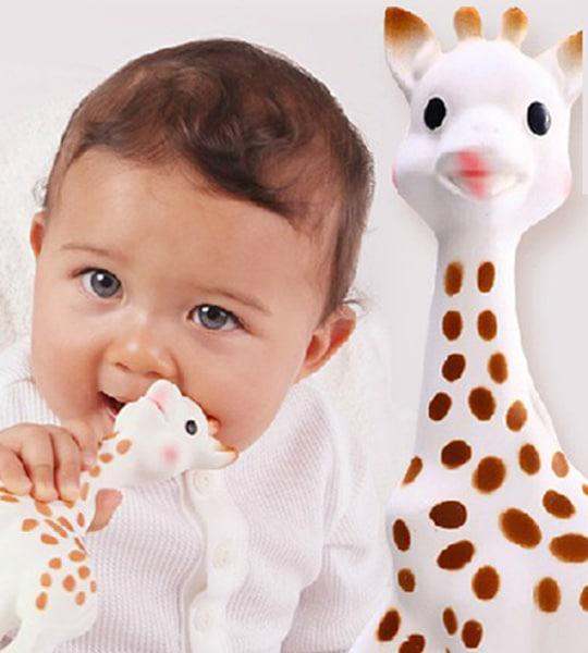 Sophie la girafe moisissure